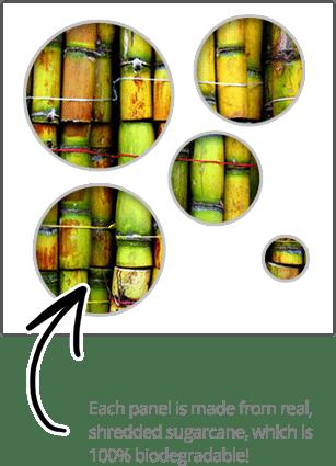 cta-sugarcane